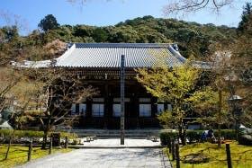 インバウンド人気観光スポットランキング12位「永観堂禅林寺」の人気の理由・インバウンド対策とは