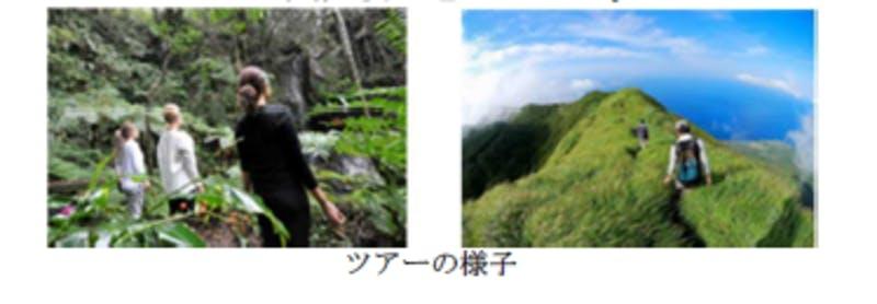 東京都八丈島のツアーの様子:令和3年版観光白書