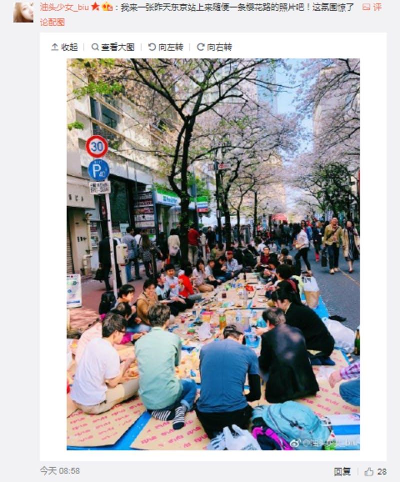 ▲東京駅で歩行者天国になった道で花見をする人たち