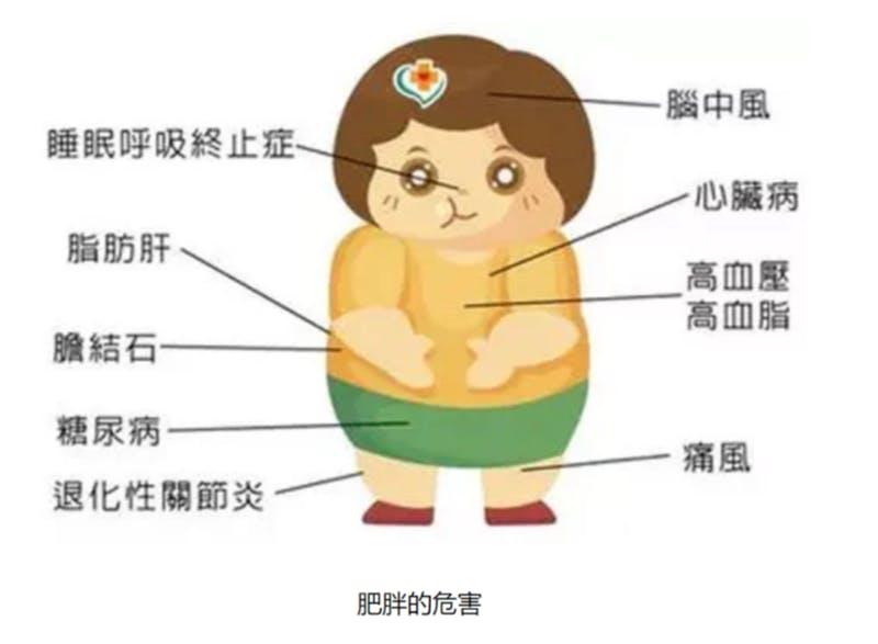 ▲[肥満に伴う健康上のリスクを解説するイラスト]:腾讯大粤 2019年11月26日