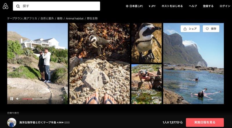 ▲[海洋生物学者と行くケープ半島]:Airbnb・体験ページより
