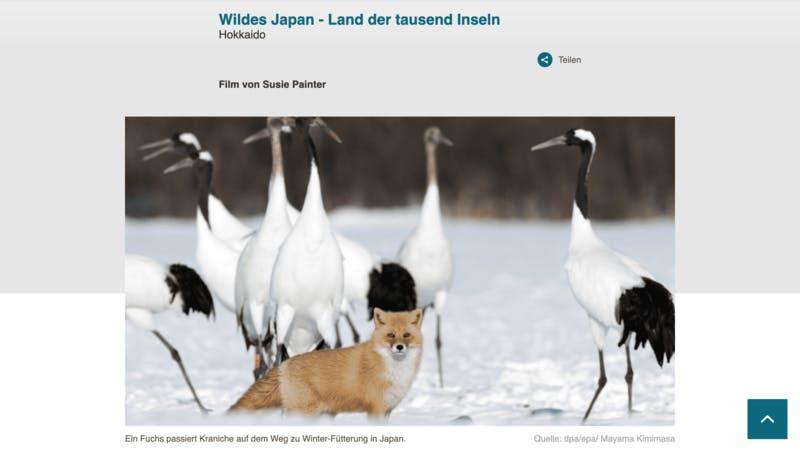 日本についてのドキュメンタリー番組 Wildes Japan - Land der tausend Inseln