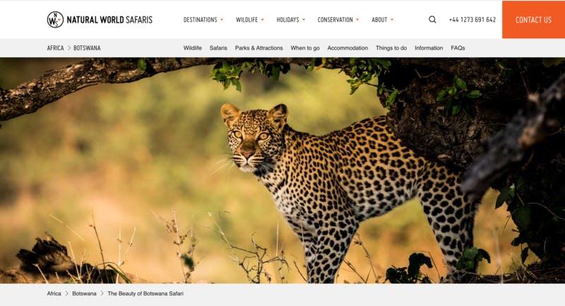 アフリカ・ボツワナ旅行プランの紹介ページ Natural World Safaris公式サイトより