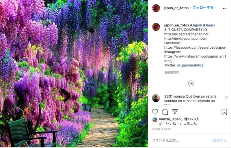 japon_en_fotosの投稿 Instagramより編集部キャプチャ