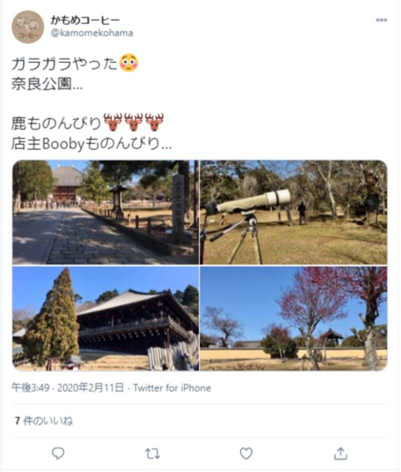 奈良公園の様子を伝えるTwitter投稿