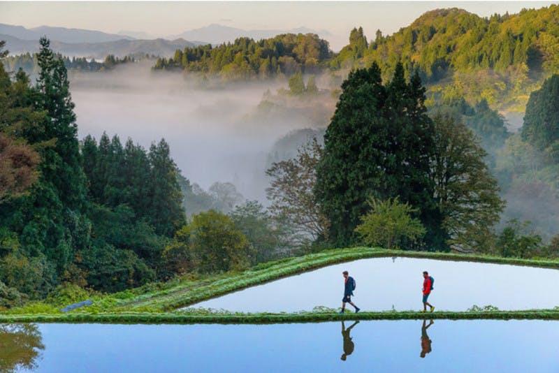新潟県の古道・松之山街道を中心に村から村をトレッキングし、国内有数の棚田「星峠の棚田」を望める場所に立ち寄るプログラム プレスリリースより