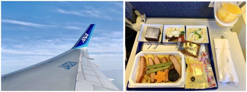 飛行機からの景色と、機内食