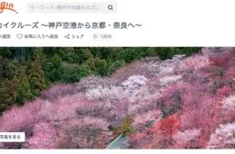 「桜スカイクルーズ」でお花見フライト!インバウンドの富裕層向け・新たな日本の上質体験が誕生「Voyagin Luxury Experiences」とは?