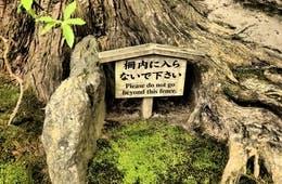 その英語、インバウンドに笑われていませんか?日本の多言語表記、2つの問題点&鳥取県の一歩先行く外国語案内の事例を紹介