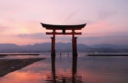 倒壊の危機、厳島神社大鳥居の大改修開始:原因は観光客の「コイン」か